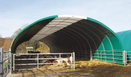 Halle für Rinderzucht, als Schafstall oder als Reithalle-